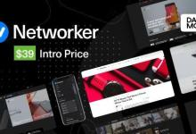 {v1.0.3} Networker - Tech News WordPress Theme with Dark Mode Nulled 3