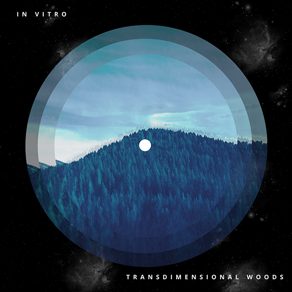 In Vitro – Transdimensional Woods
