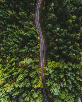 A bird's eye view of a moving van driving down a narrow road straddled by woods.