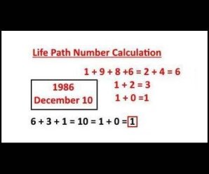 Life Path Numbers Meaning
