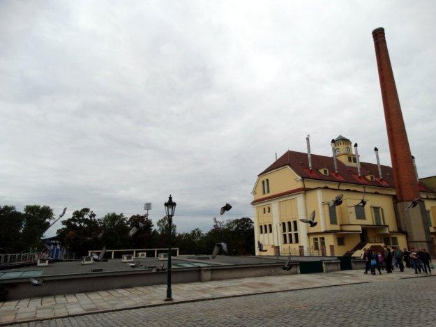 Browar w Pilźnie