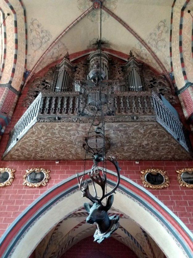 Głowa Jelenia w kościele farnym w Chełmnie