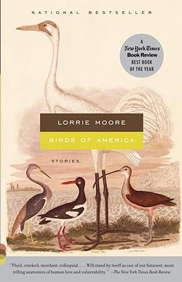 Birds-of-America