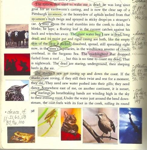 pilgrim page 98
