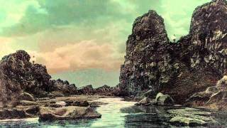 "Numéro Cinq at the Movies | Inga Birgisdóttir's ""Varúð"" Introduced by R. W. Gray"