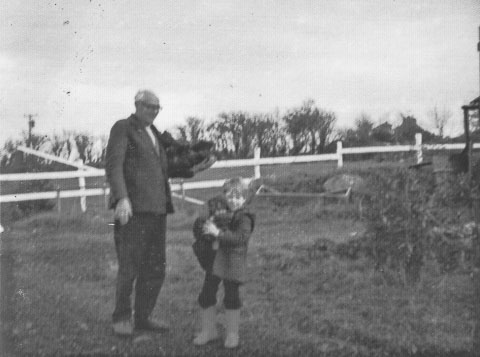 Author's grandfather and brother collecting turf