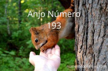 Anjo Número 193 – Significado do Número do Anjo 193