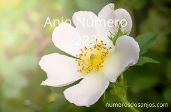 Significado do anjo número 223 – Significado do Número do Anjo 223