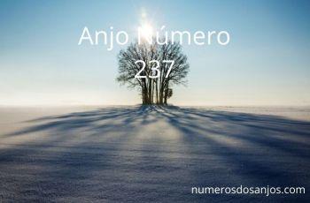 Anjo Número 237 – Significado do anjo número 237