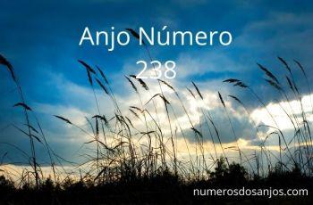 Anjo número 238 – Significado do anjo número 238