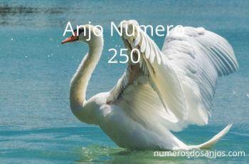Anjo Número 250 Significado – Número e Significado do Anjo 250