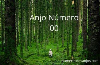 Anjo Número 00 Significado: Você está vendo 00?