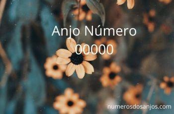 Número do anjo 00000 Significado: Abundância de círculo completo