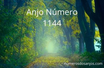 Anjo Número 1144 – Significado do anjo número 1144
