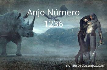 Anjo Número 1236 – Significado do anjo número 1236