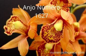 Anjo Número 1627 – Significado do anjo número 1627