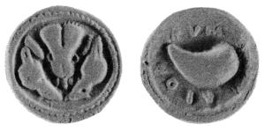 Fig. 12: Didramma focese di Cuma D/Protome leonina tra due teste di cinghiale R/Mitilo; intorno ΚΥΜΑΙΟΝ (Berlin 21 = N. K. Rutter 15, gr. 6,18)