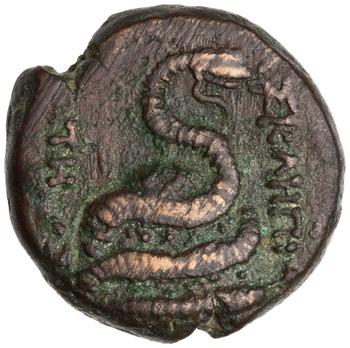 Reverse of Bronze Coin, Pergamum. 1944.100.43256