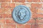 Lion Wall Mask - Round