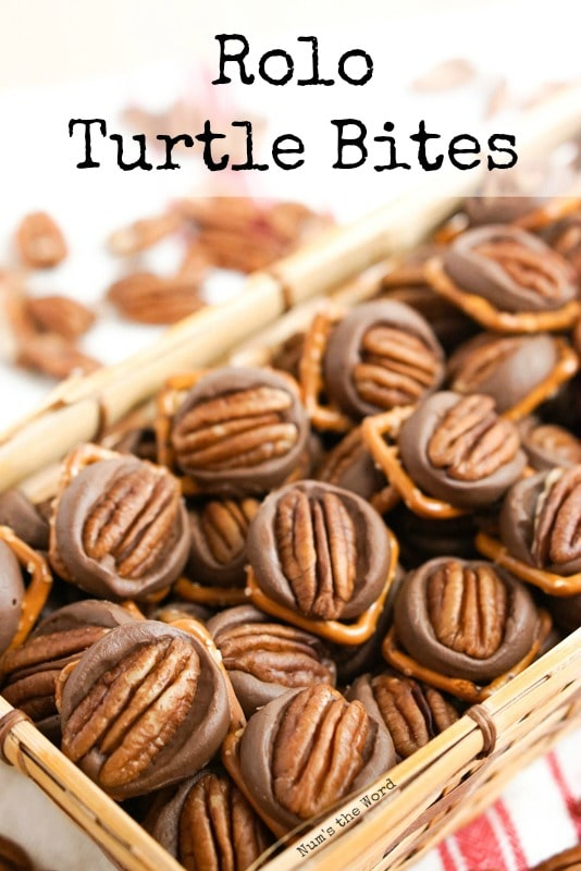 Rolo Turtle Bites - Simple Homemade Turtles main image for recipe