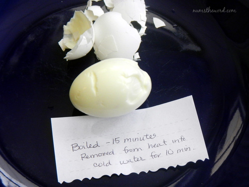 Hard Boiled Egg Test 1
