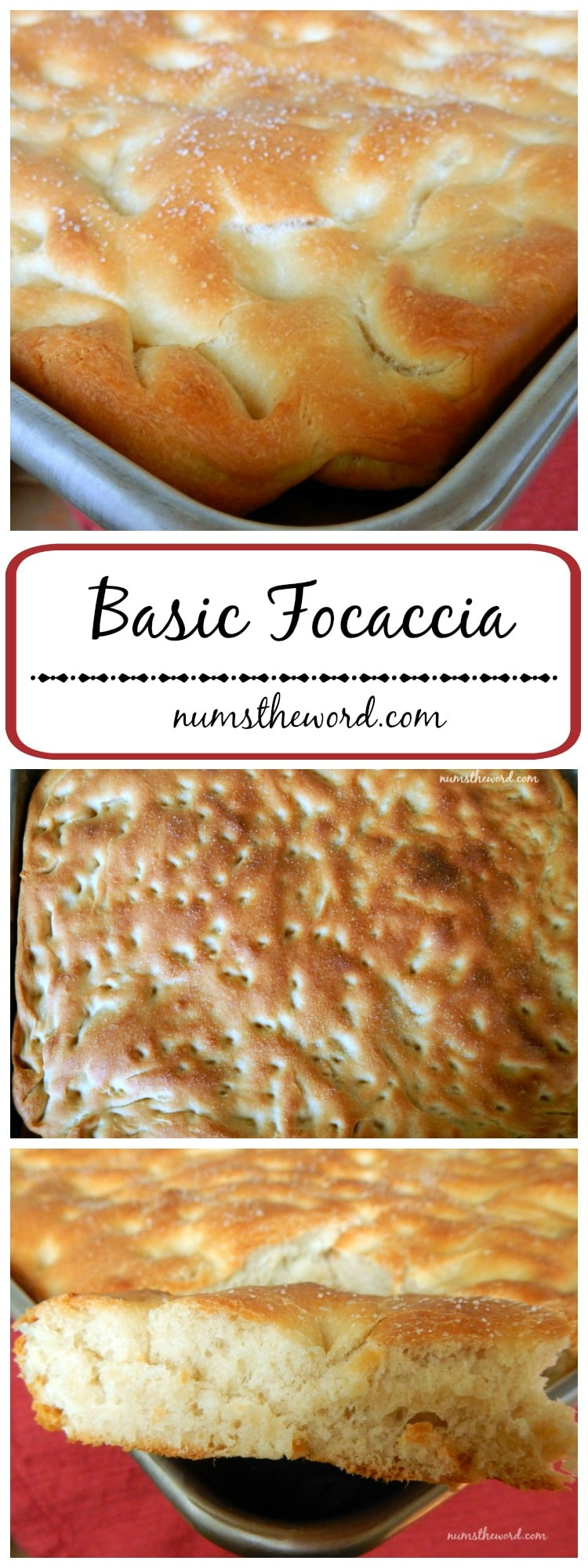 Basic Focaccia Bread LONG