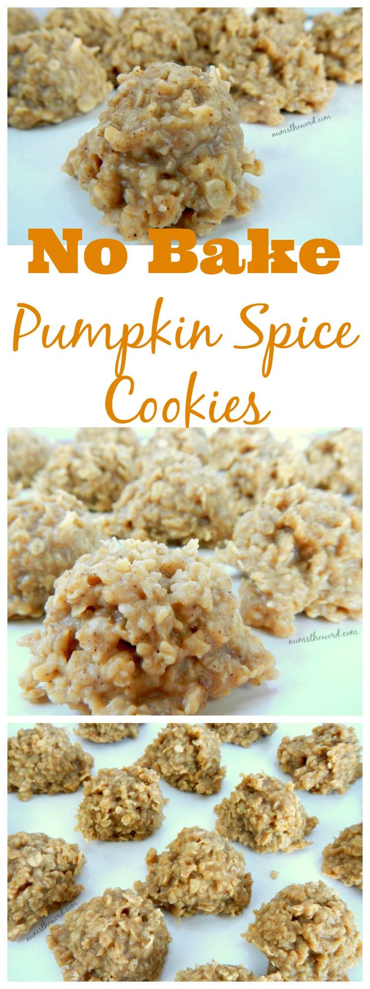 No Bake Pumpkin Spice Cookies