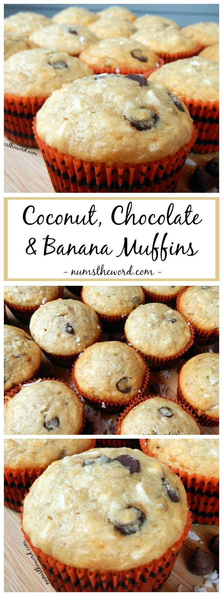 Coconut, Chocolate & Banana Muffins