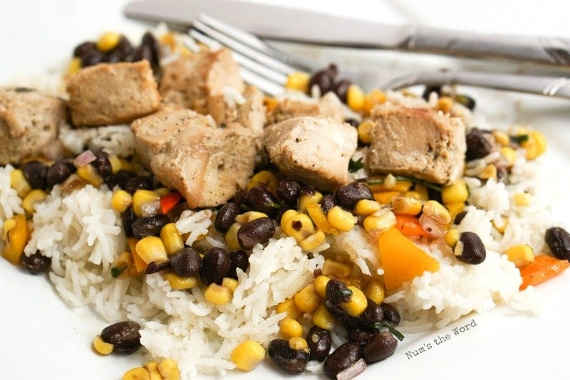 Mexican Chicken Kabobs - chicken off of skewer laying on rice and salsa