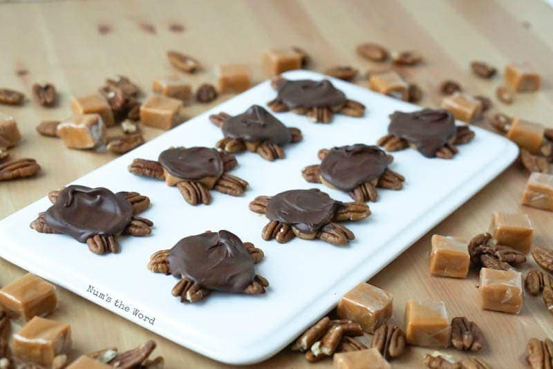 Turtle Pecans