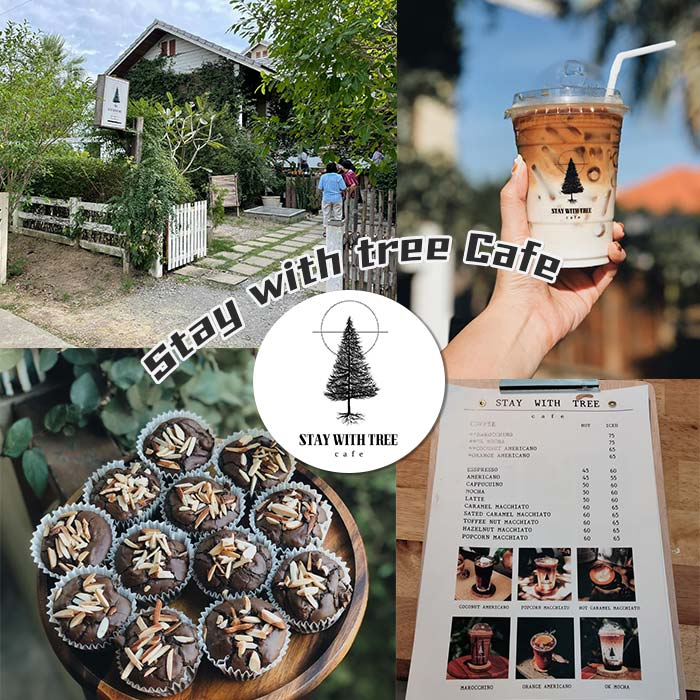 Stay with tree Cafe