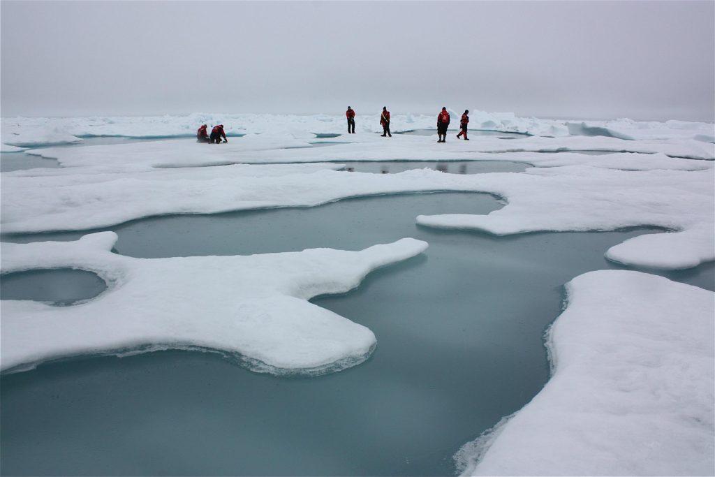 Arctic melt ponds