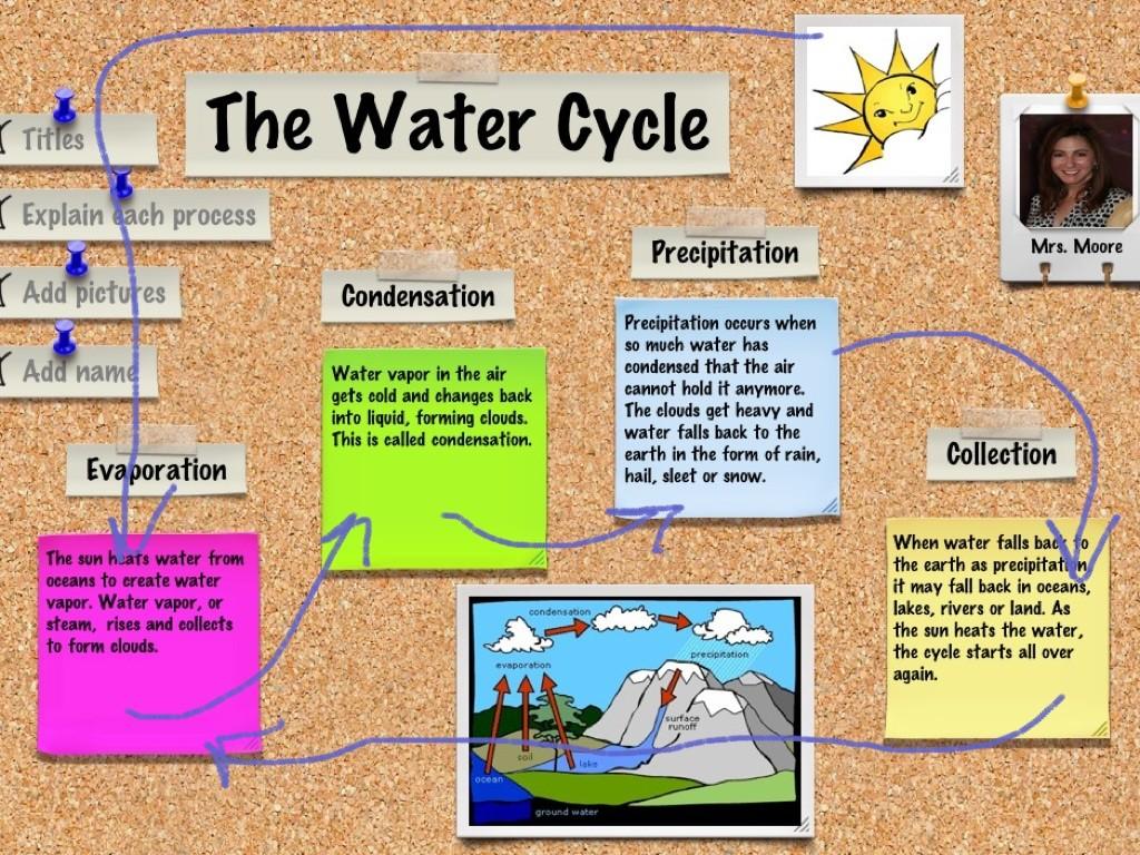 Nunez Water Savers Group 7
