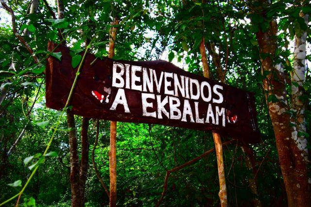 Se ve el cartel de Ekbalam en madera puesto en dos troncos muy finos de árbol, con mucha vegetation detrás y algunas hojas caen o están por encima de los bordes del cartel