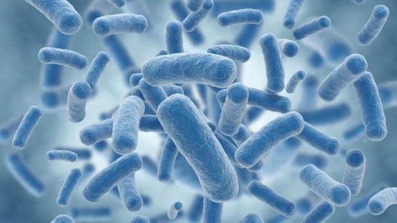 Understanding Molecular Machinery Empowers Future Potent Antibiotics