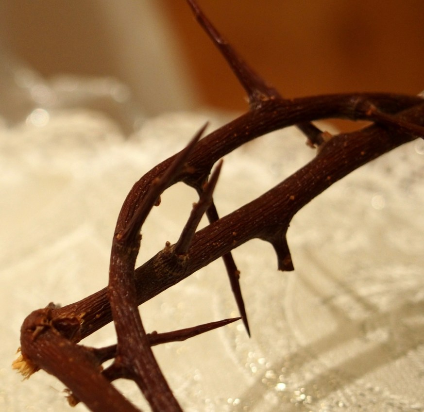 Yes, the Crown of Thorns is real.