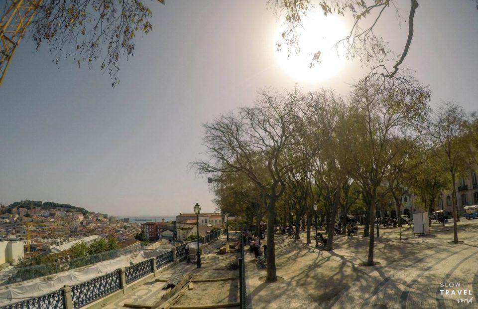 Jardim de São Pedro de Alcântara | Lisboa