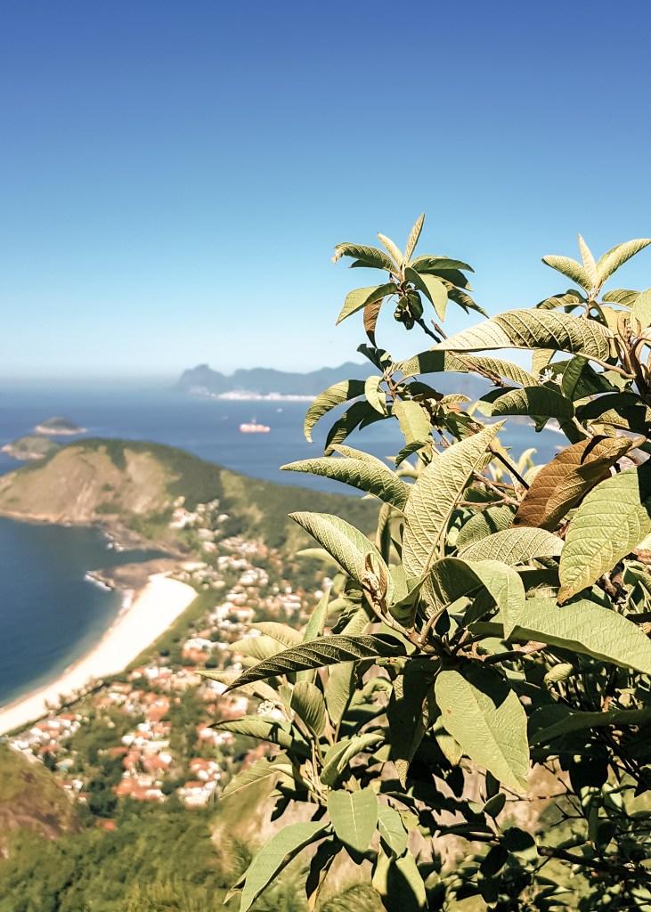 Trilha do Alto Mourão / Visual do Rio