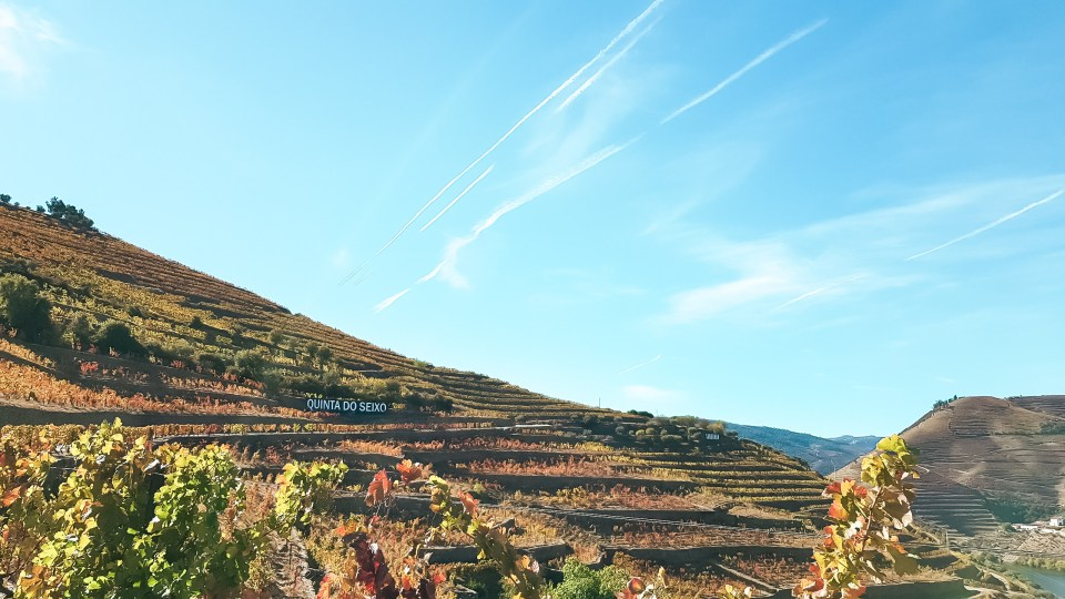 Melhores quintas da região do Douro_Quinta do Seixo