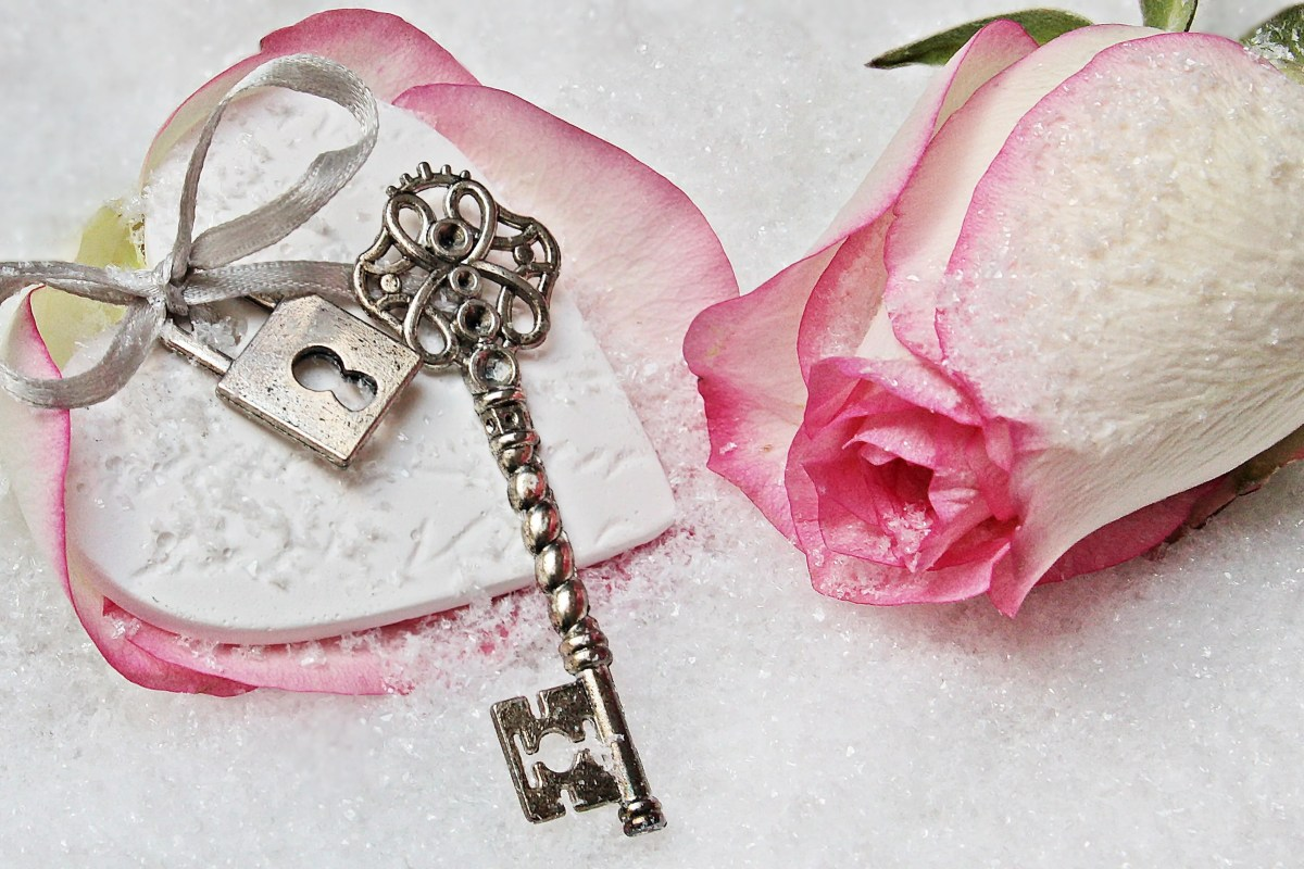 Pink and white rose, ribbon and key laid out on a white background.