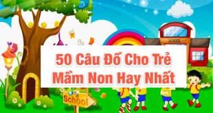 50 Câu Đố Cho Trẻ Mầm Non Giúp Bé Khám Pháp Thế Giới Xung Quanh