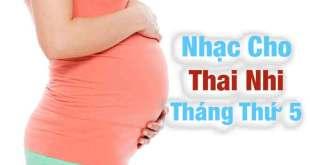 Nhạc Cho Thai Nhi Tháng Nhứ 5