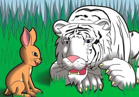 Kể chuyện cho bé 3 tuổi - Con Thỏ Và Con Hổ