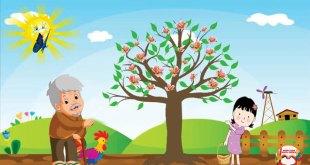 truyện cây táo