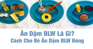 Ăn Dặm BLW Là Gì