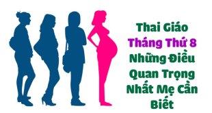 Thai Giáo Tháng Thứ 8 - Những Điều Quan Trọng Nhất Mẹ Cần Biết