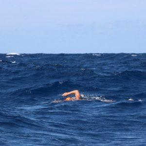 Swimming Story di Davide Belletti 8