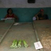 Dittatura cubana: chi sono i responsabili?