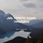 JUAL KAMBING AQIQAH DI TANGERANG