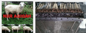 kambing aqiqah tiga raksa